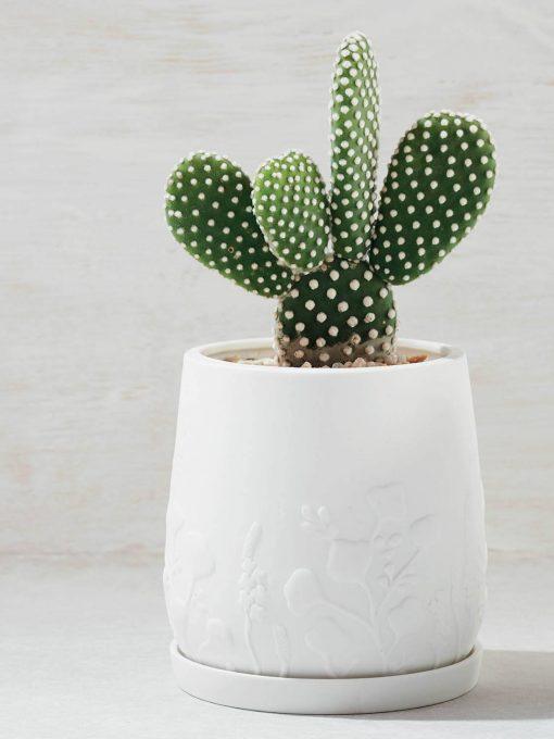 Relief-Plant-Pot-White22